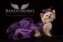 Purple Haze Dress designed and made by Anthony Rubio for Bandit Rubio Designs.