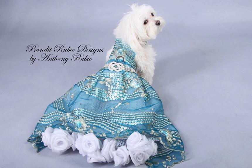 Anthony Rubio's Stellen Dress