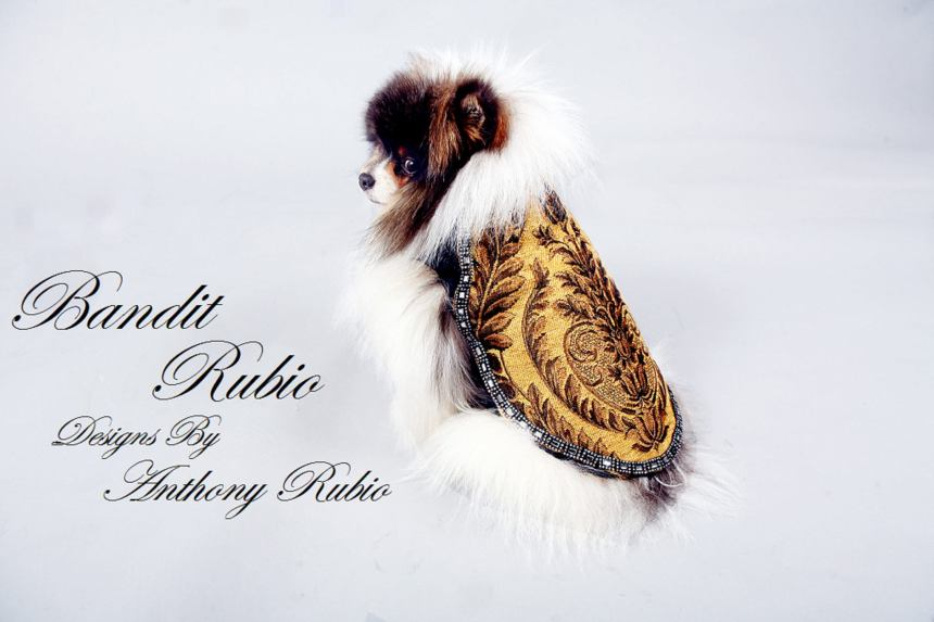 Anthony Rubio's Custom Tapestry Coat
