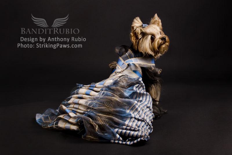 Anthony Rubio's Le Bleu Cancan for Bandit Rubio Designs.