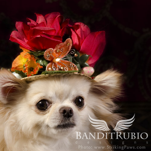 Chapeau Floral designed and made by Anthony Rubio for Bandit Rubio Designs.
