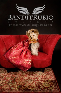 Golden Paisley Dress designed and made by Anthony Rubio for Bandit Rubio Designs.