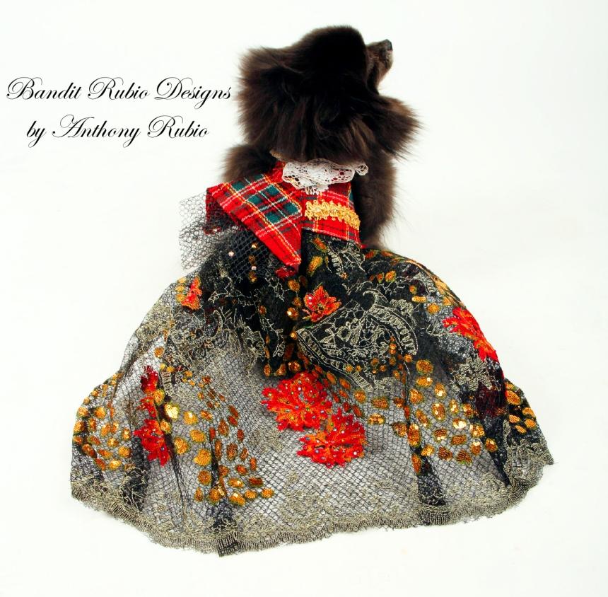 Anthony Rubio's McQueen Dress