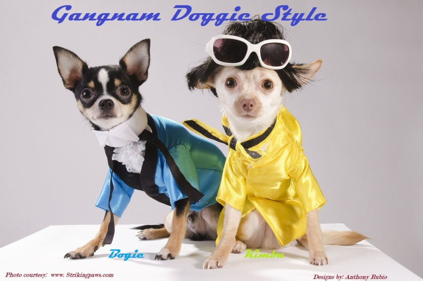 Gangnam Doggie Style by Anthony Rubio