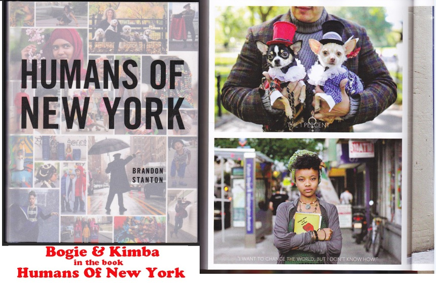 Anthony Rubio's dogs Bogie & Kimba in Humans of New York book