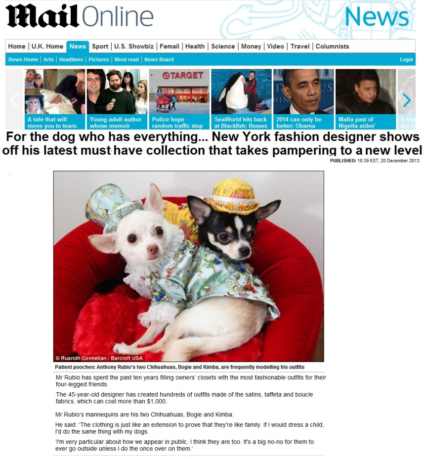 Anthony Rubio's dogs Bogie & Kimba in The Daily Mirror U.K.