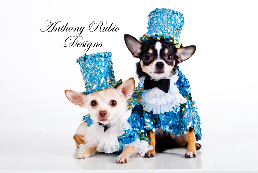 Bogie and Kimba are wearing Anthony Rubio Designs (Photo by Yoni Levy)