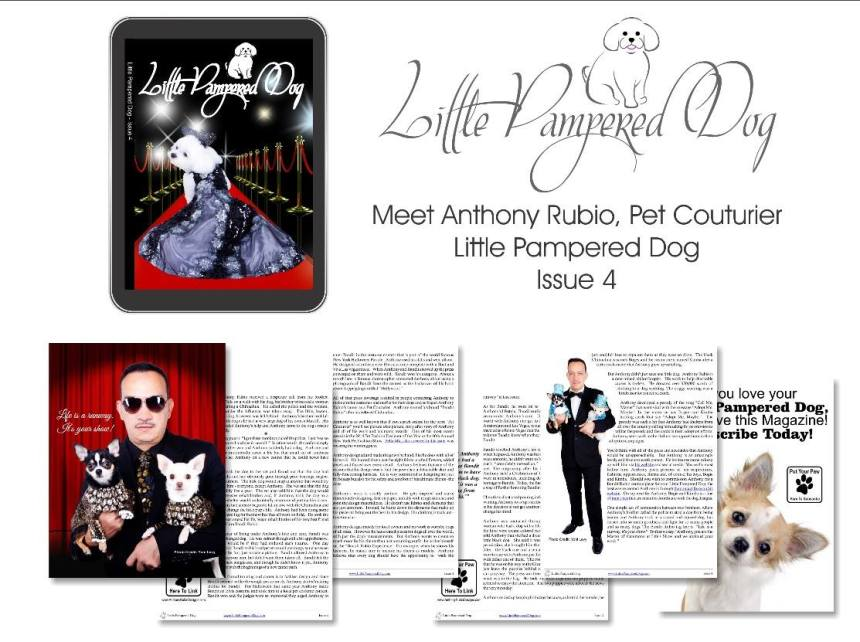 Anthony Rubio Cover Story in Little Pampered Dog Magazine