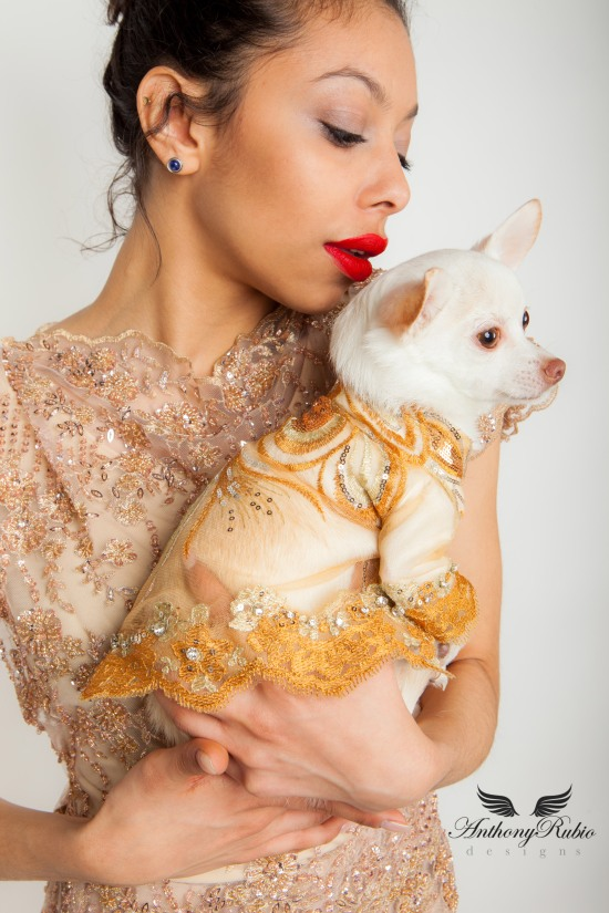Pet Couturier Anthony Rubio's Spring/Summer 2015 Collection