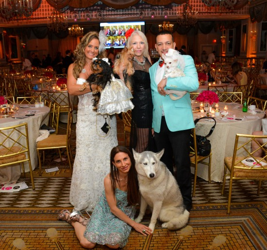 Anthony Rubio with Chihuahua Kimba attend the 2015 Bideawee Ball held at Pierre Hotel