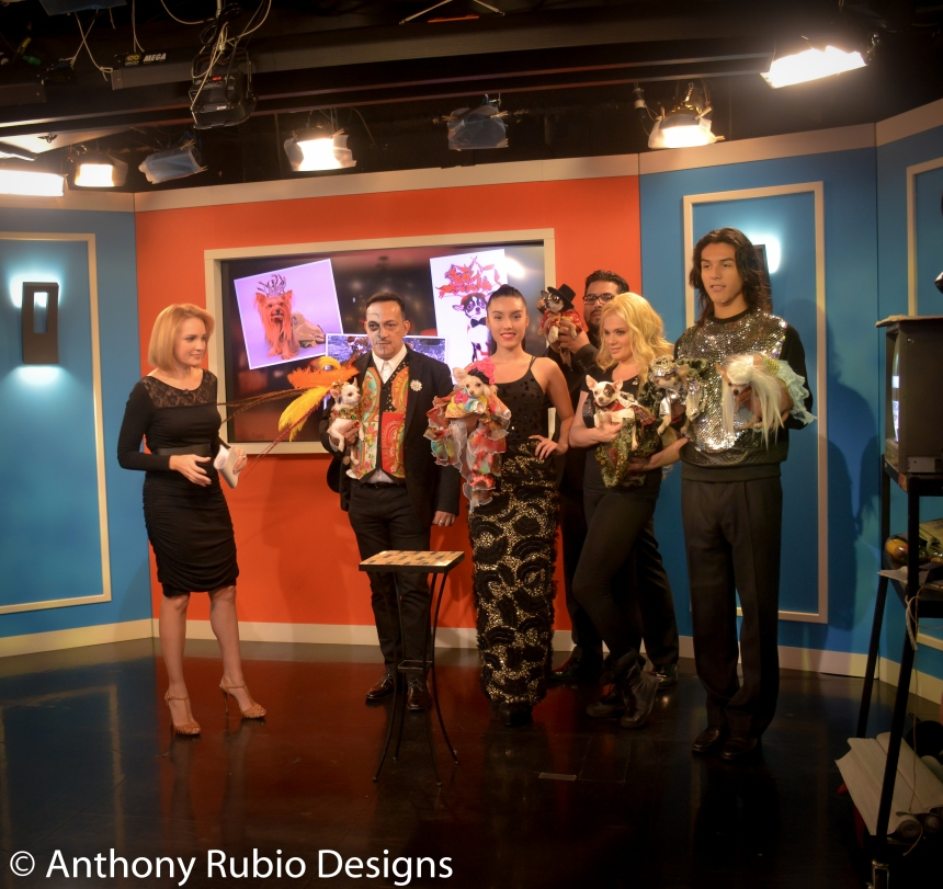 Anthony Rubio Interviewed on the Halloween Edition of Telemundo's Morning Show