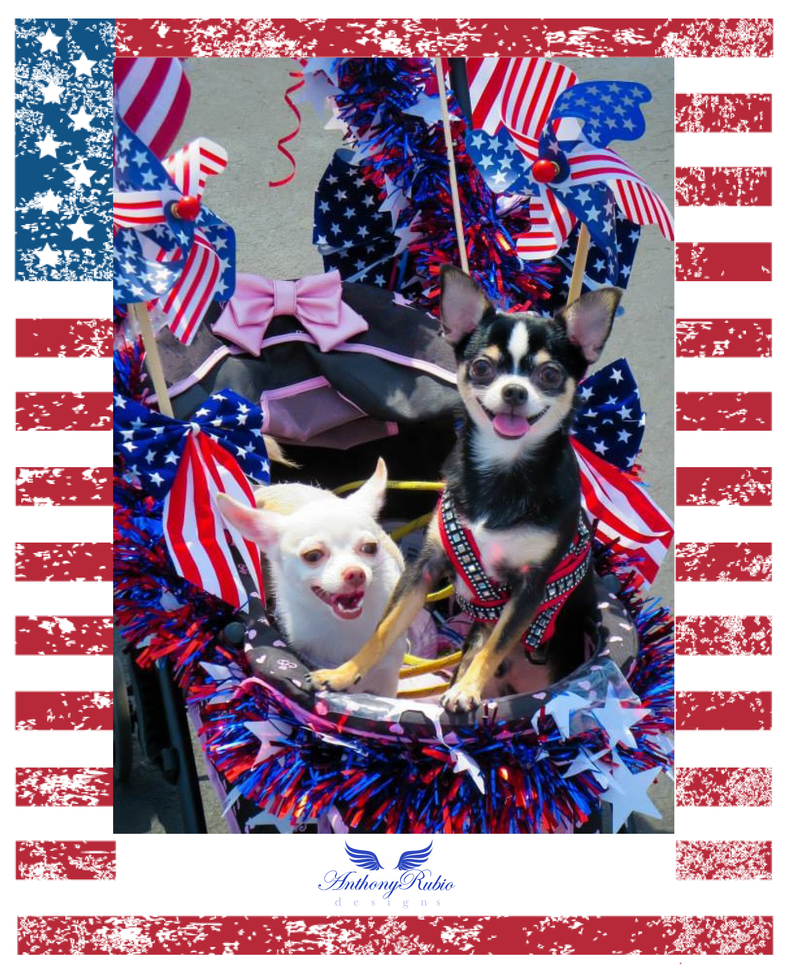 Happy Independence Day! from Anthony Rubio Designs