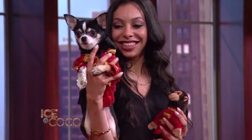 Designer Anthony Rubio with Ice-T and Coco on the set of Ice And Coco talk show on Fox Model Elena Martinez with Chihuahua Bogie wearing Anthony Rubio Designs