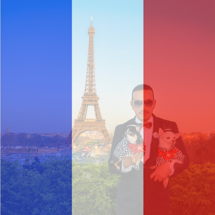 Pray For Paris! Anthony Rubio along with Chihuahua duo Bogie and Kimba to Paris, France.