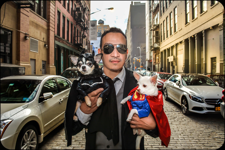 Anthony Rubio's  Chihuahuas Bogie And Kimba as Batman vs Superman: Dawn of Justice take on Gotham