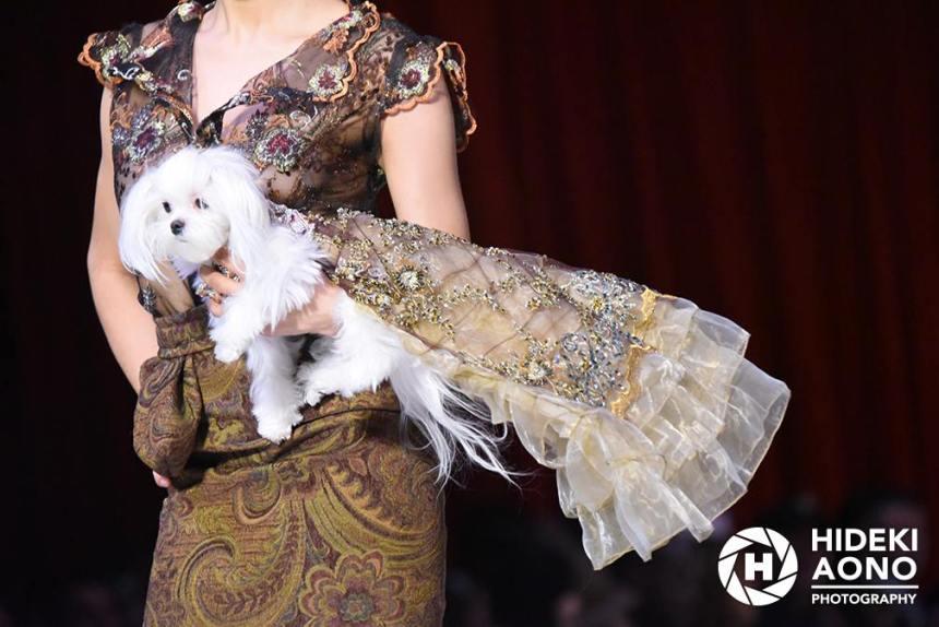 Anthony Rubio Fall/Winter 2016 - New York Fashion Week Women's Wear & Canine Couture Canine Model: Roxie Photo by: Hideki Aono
