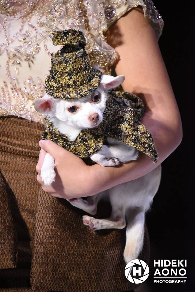 Anthony Rubio Fall/Winter 2016 - New York Fashion Week Women's Wear & Canine Couture Female Model: Rebecca Ruber Canine Model: Kimba Photo by: Hideki Aono