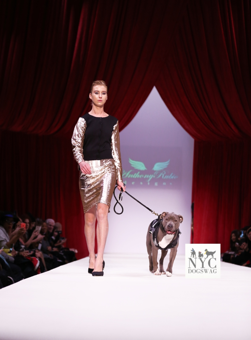 Anthony Rubio Fall/Winter 2016 - New York Fashion Week Women's Wear & Canine Couture Female Model: Natasha Collimore Canine Model: Chase, SometimesCarl Photo by: Jason Howard
