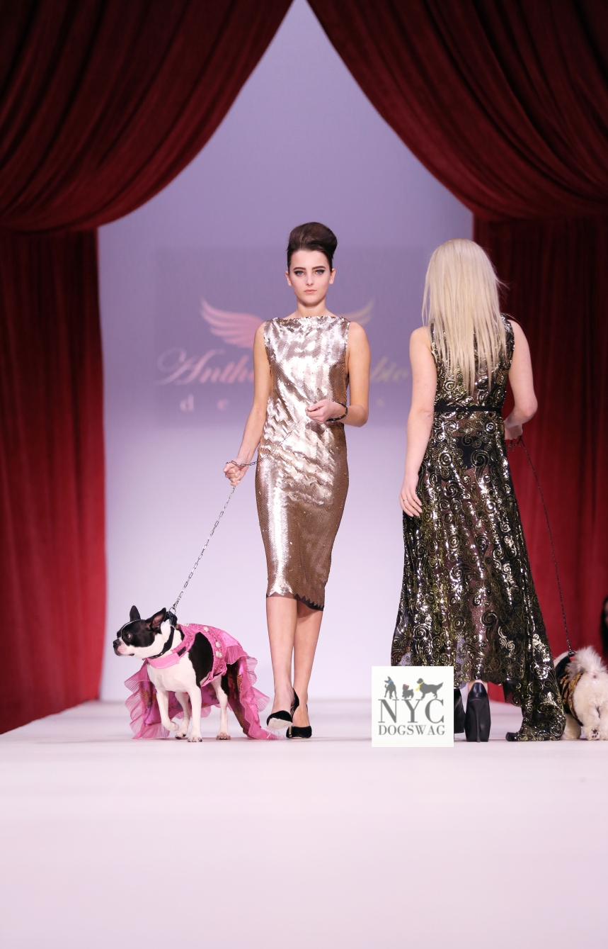 Anthony Rubio Fall/Winter 2016 - New York Fashion Week Women's Wear & Canine Couture Female Model: Josie Giordano Canine Model: Rita Photo by: Jason Howard