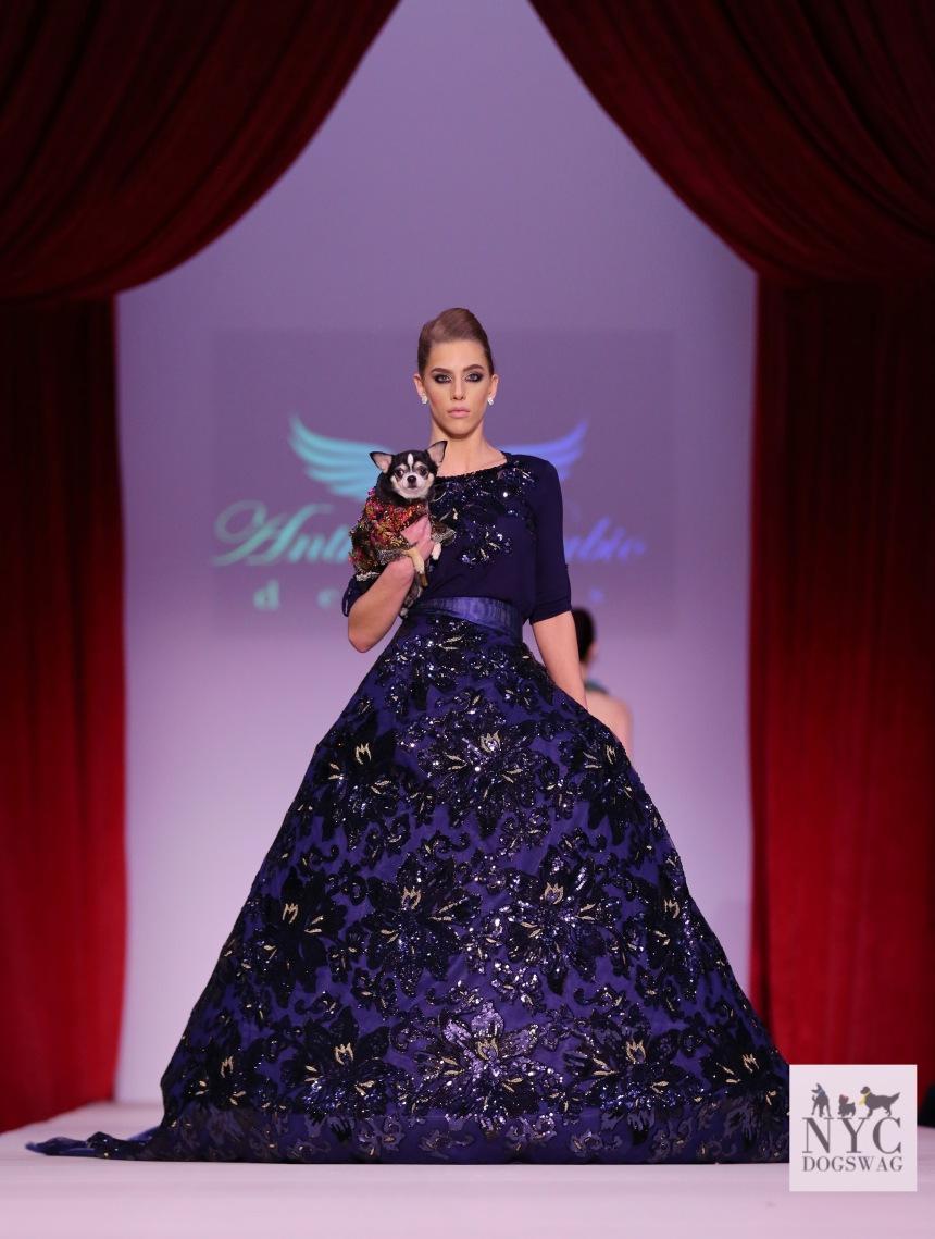 Anthony Rubio Fall/Winter 2016 - New York Fashion Week Women's Wear & Canine Couture Female Model: Marissa Zandonella Canine Model: Bogie Photo by: Jason Howard