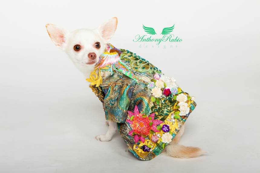 "Pet Fashion by Anthony Rubio. Inspired by the Robin Williams film ""What Dreams May Come"""