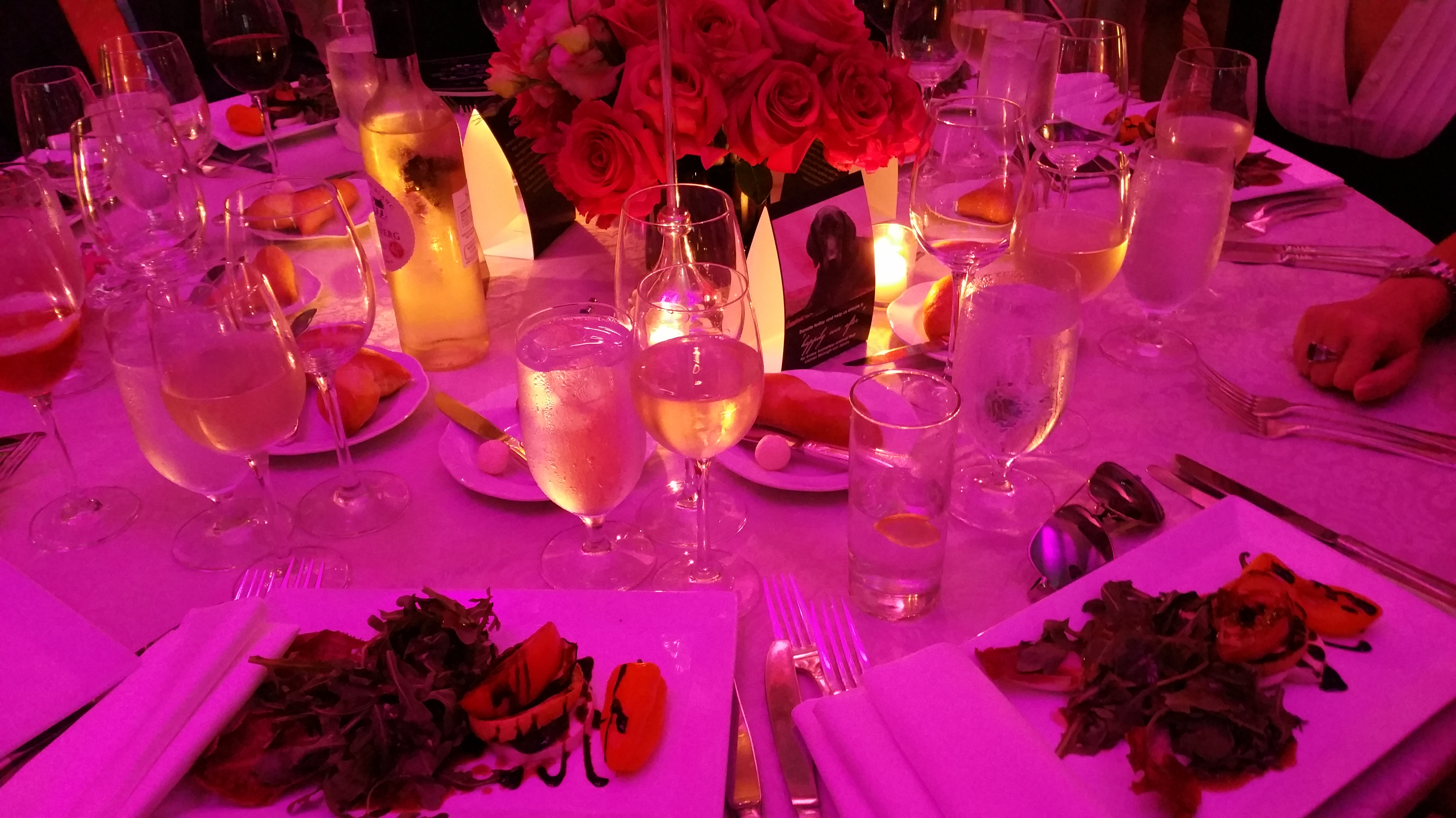 2016 Bideawee Ball at The Pierre Hotel in New York City