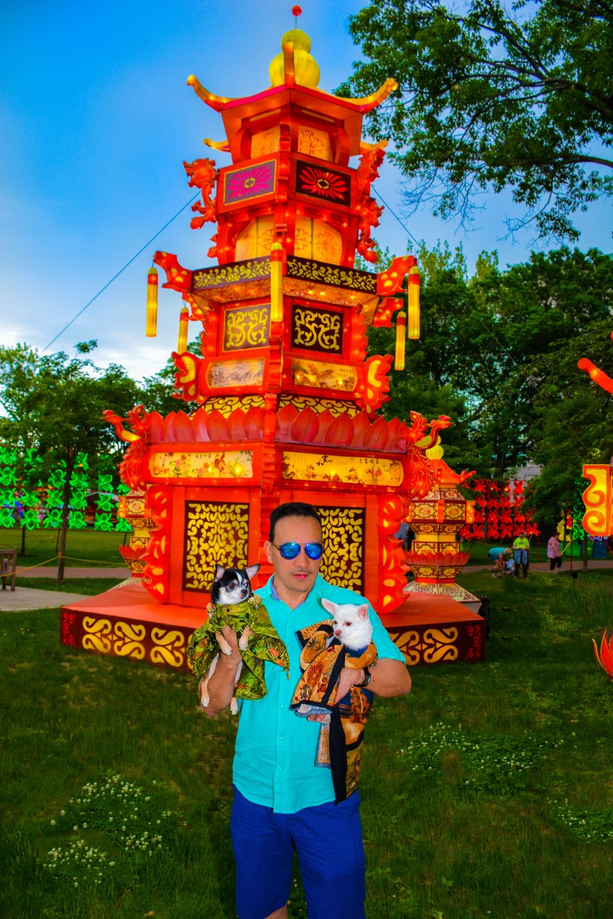 Anthony Rubio with Chihuahua duo Bogie and Kimba visit Philadelphia Chinese Lantern Festival