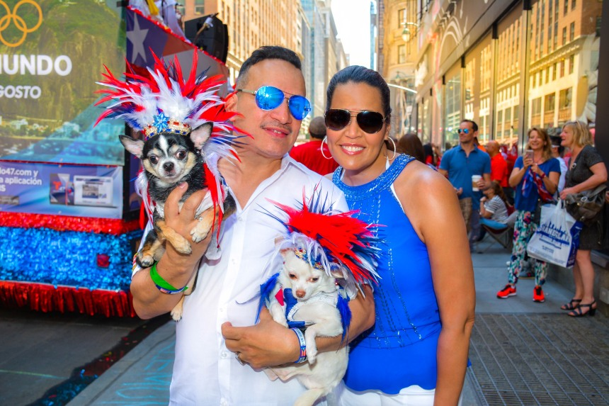Anthony Rubio and his Chihuahua duo Bogie and Kimba with Freestyle Music singer  Judy Torres at the 2016 National Puerto Rican Day Parade