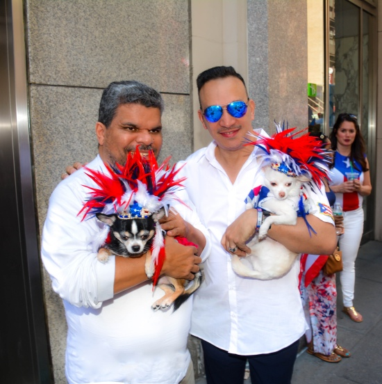 Anthony Rubio and his Chihuahua duo Bogie and Kimba with actor Luis Guzman at the 2016 National Puerto Rican Day Parade