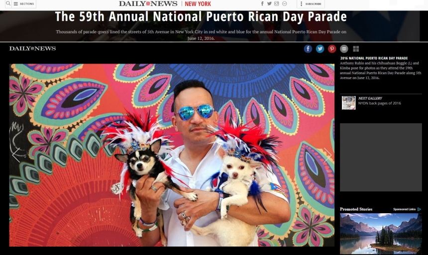 Anthony Rubio and Bogie and Kimba featured in the New York Daily News from 2016 National Puerto Rican Day Parade