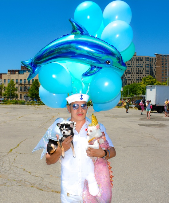 Anthony Rubio and Chihuahua duo Bogie and Kimba marched in the 34th Annual Mermaid Parade