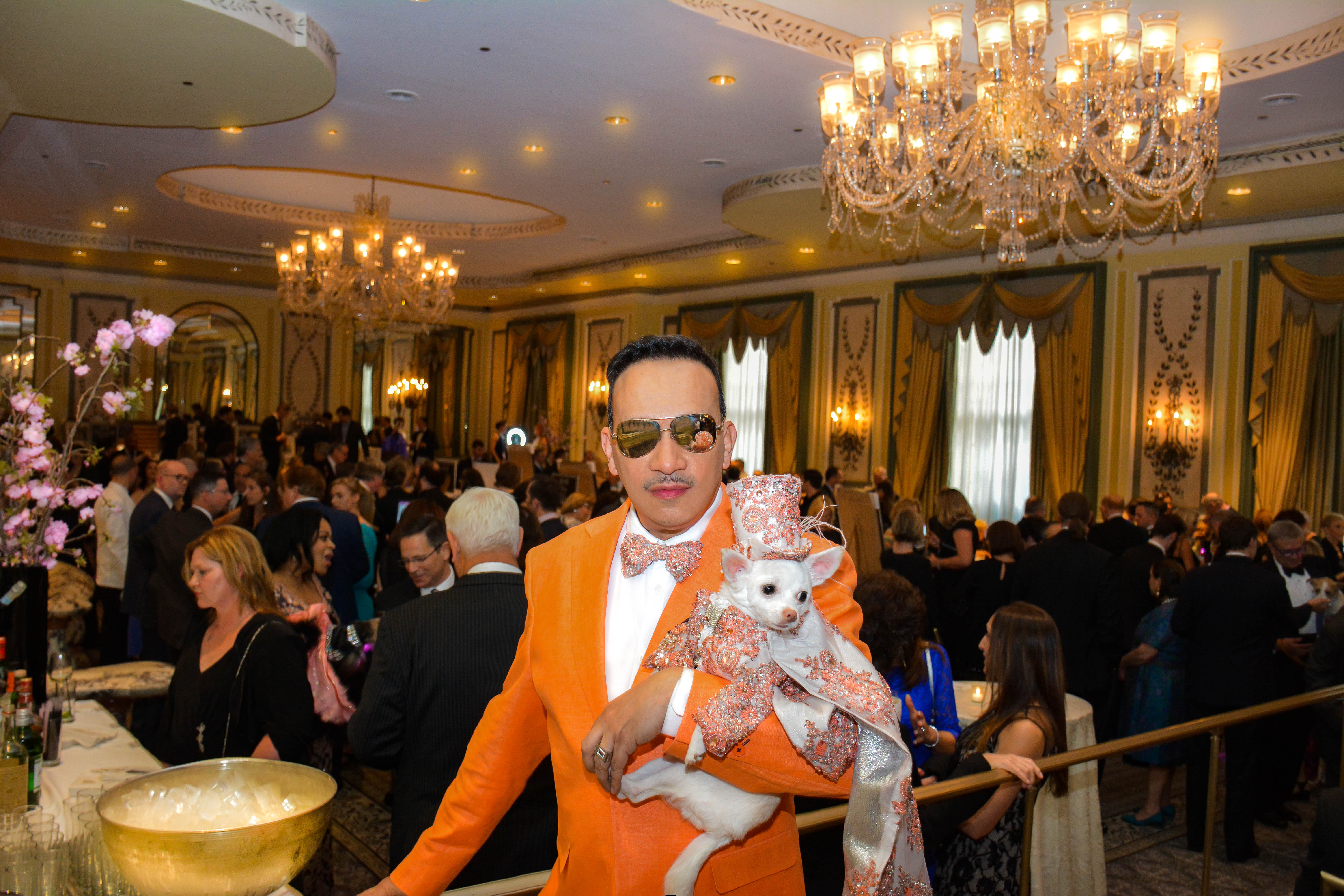 Anthony rubio anthony rubio designs dog fashion for The pierre hotel in new york city