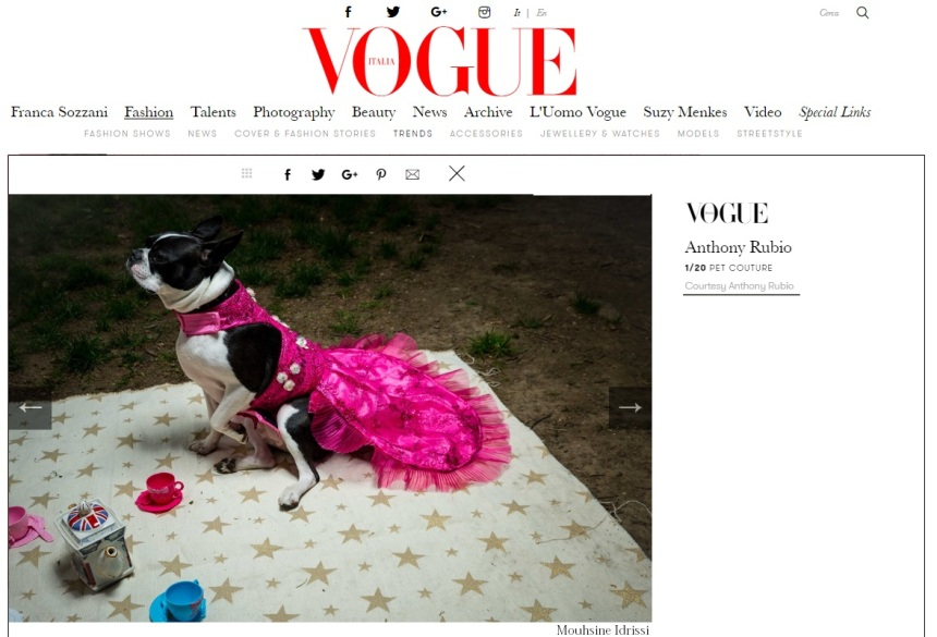 Anthony Rubio Designs featured article in Vogue Italia Photo by Mouhsine Idrissi Janati Model: Rita, a Boston Terrier