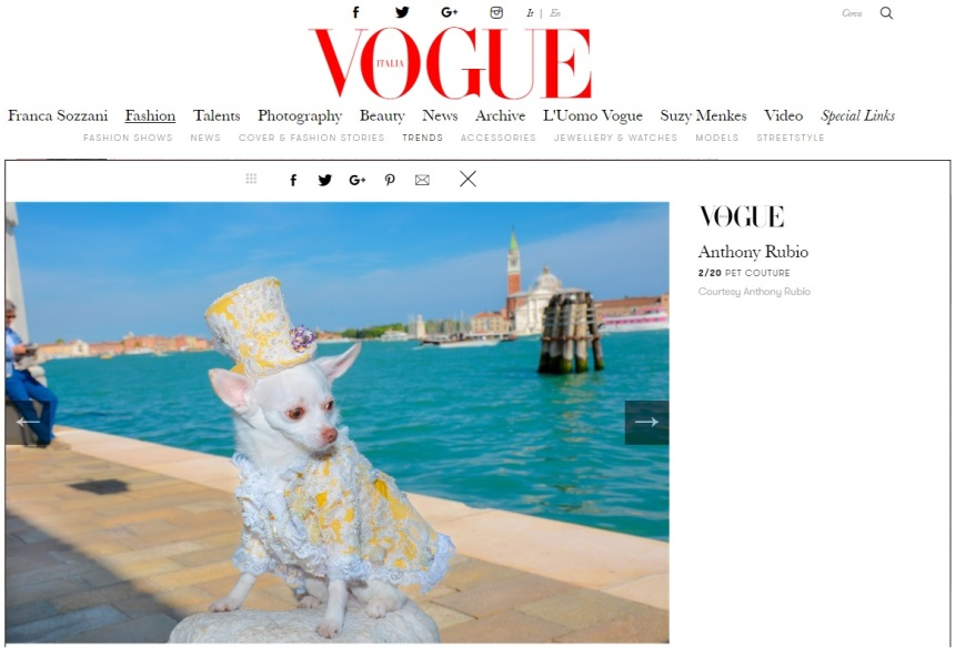 Anthony Rubio Designs featured article in Vogue Italia Photo by Rob Robb Model: Kimba, a Chihuahua of @BogieAndKimba