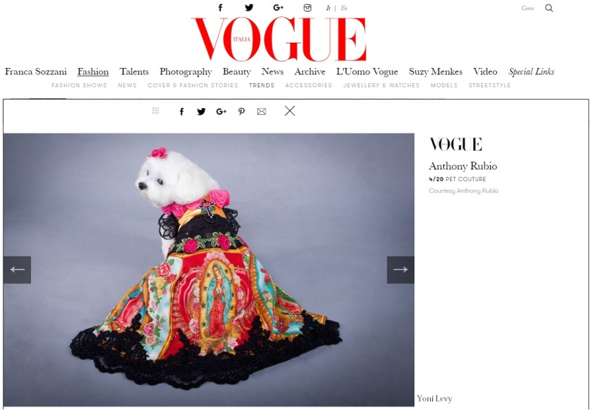 Anthony Rubio Designs featured article in Vogue Italia Photo by Yoni Levy Model: Bella Mia, a Maltese