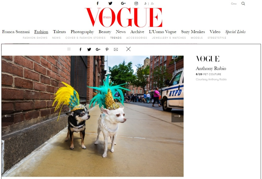 Anthony Rubio Designs featured article in Vogue Italia Photo by Rob Robb Models: Bogie and Kimba, Chihuahuas