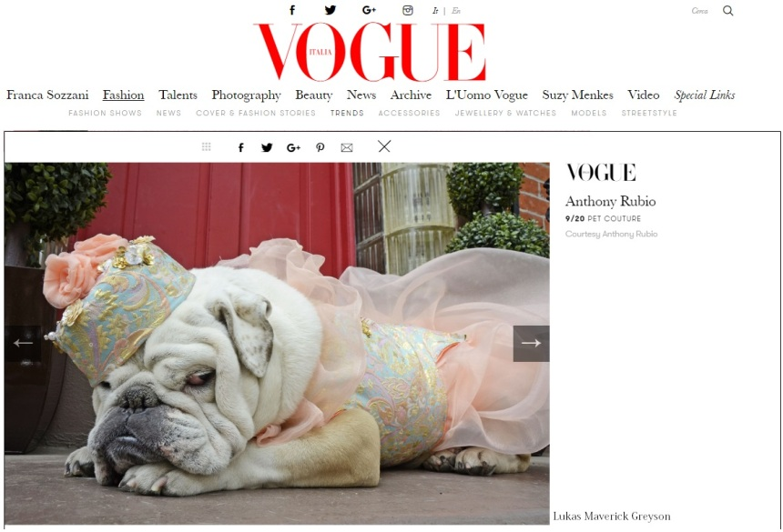 Anthony Rubio Designs featured article in Vogue Italia Photo by Lukas Maverick Greyson Model: Gracie, a Bulldog