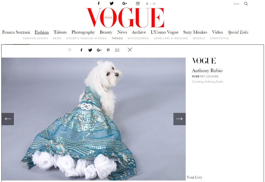 Anthony Rubio Designs featured article in Vogue Italia Photo by Yoni Levy Model: Z Z, a Maltipoo