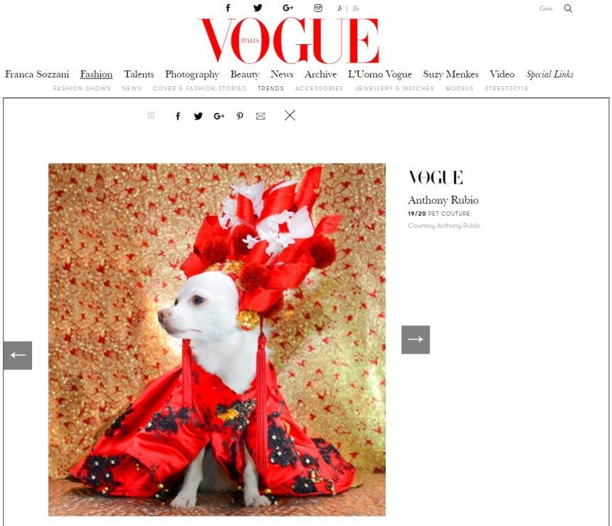 Anthony Rubio Designs featured article in Vogue Italia Photo by Rob Robb Model: Kimba, a Chihuahua