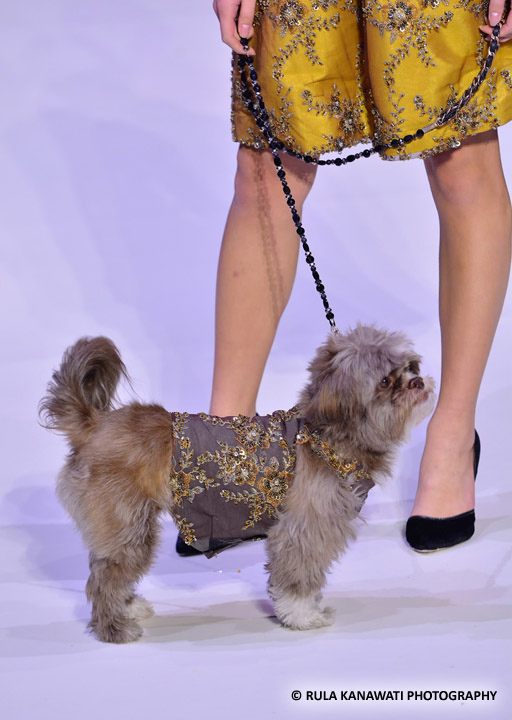 Anthony Rubio Fall/Winter 2016 - New York Fashion Week Women's Wear & Canine Couture Female Model: Nicole Cuizon Canine Model: Henry Photo by: Rula Kanawati