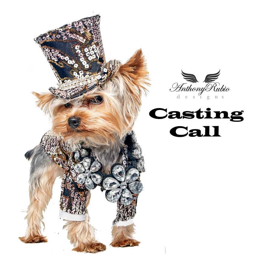 Anthony Rubio's NYFW Canine Casting Call