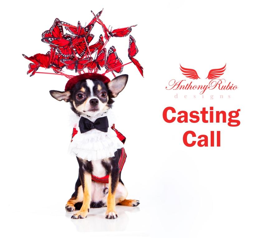 Anthony Rubio's Canine Model Casting