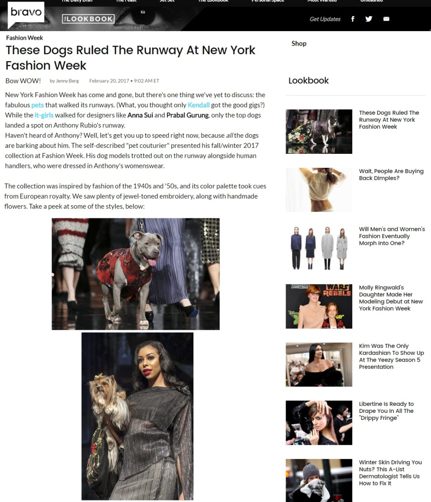 Anthony Rubio's New York Fashion Week show featured on Bravo TV Network's website
