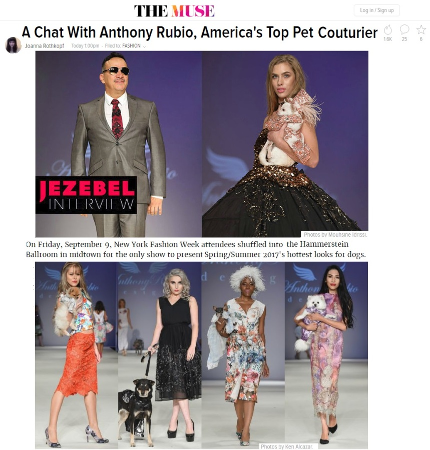 Anthony Rubio's Interview for Jezebel - Dog Fashion, Pet Fashion, Fashion Week