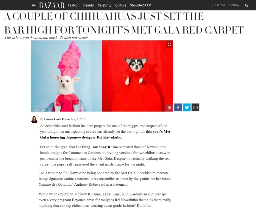 Anthony Rubio featured article in Harper's Bazaar