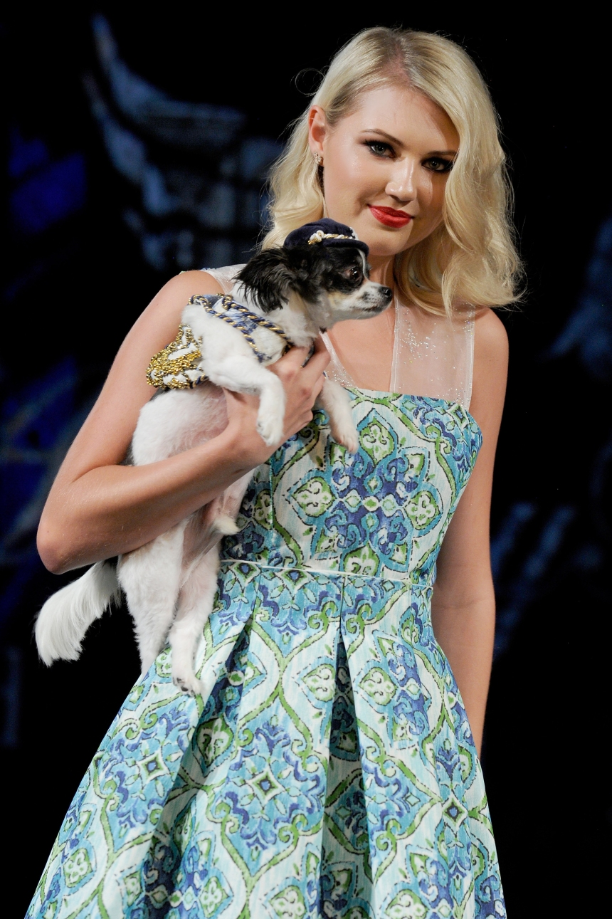 Anthony Rubio Spring/Summer 2018 Women's Wear & Canine Couture New York Fashion Week Photo by Arun Nevader - Getty Images Model: Canine Model: @IPartyWithBruceWayne