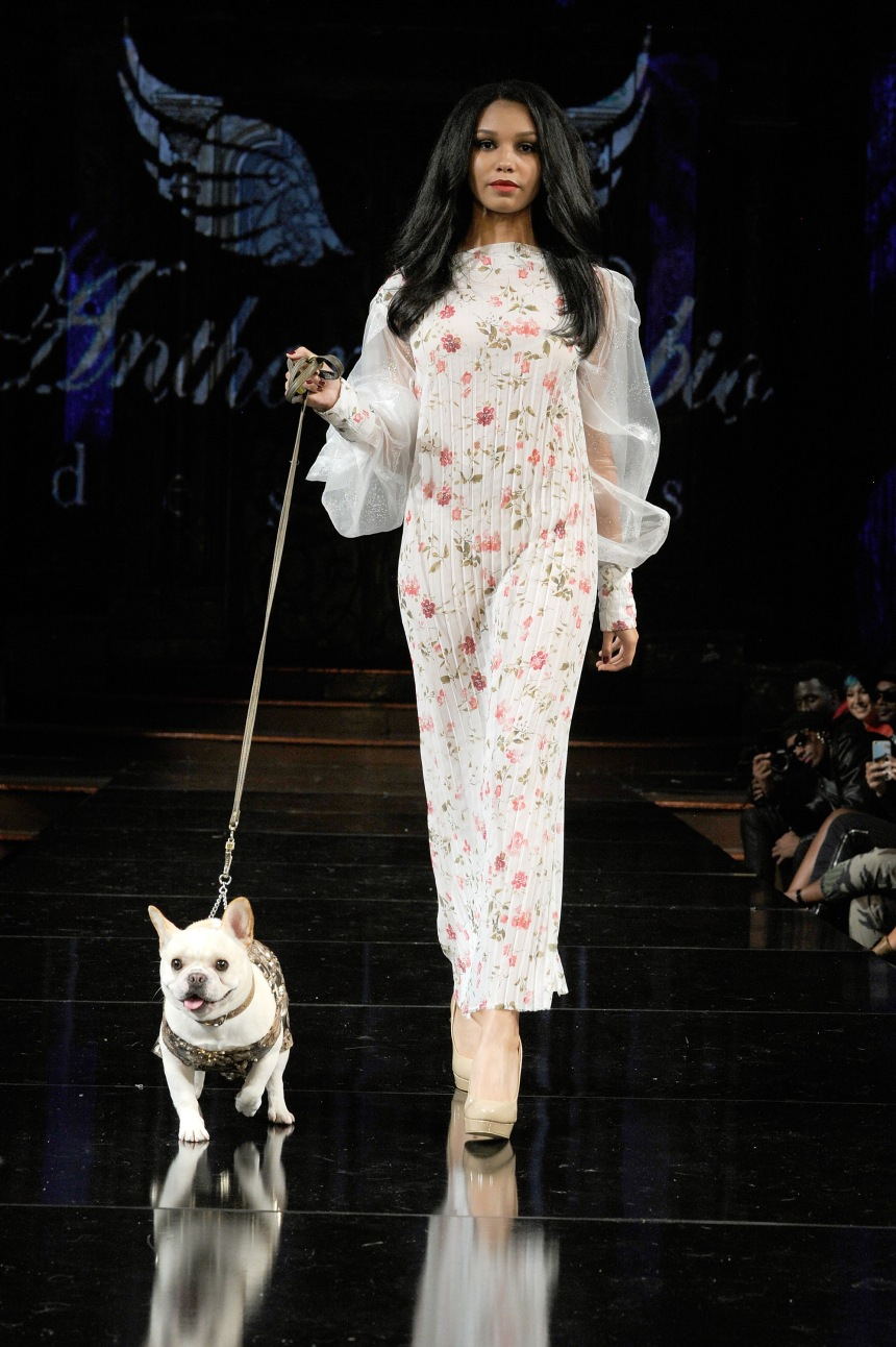 Anthony Rubio Spring/Summer 2018 Women's Wear & Canine Couture New York Fashion Week Photo by Arun Nevader - Getty Images Model: Sumer Rayne Canine Model: Sebastian (@SebastianLovesLuna)