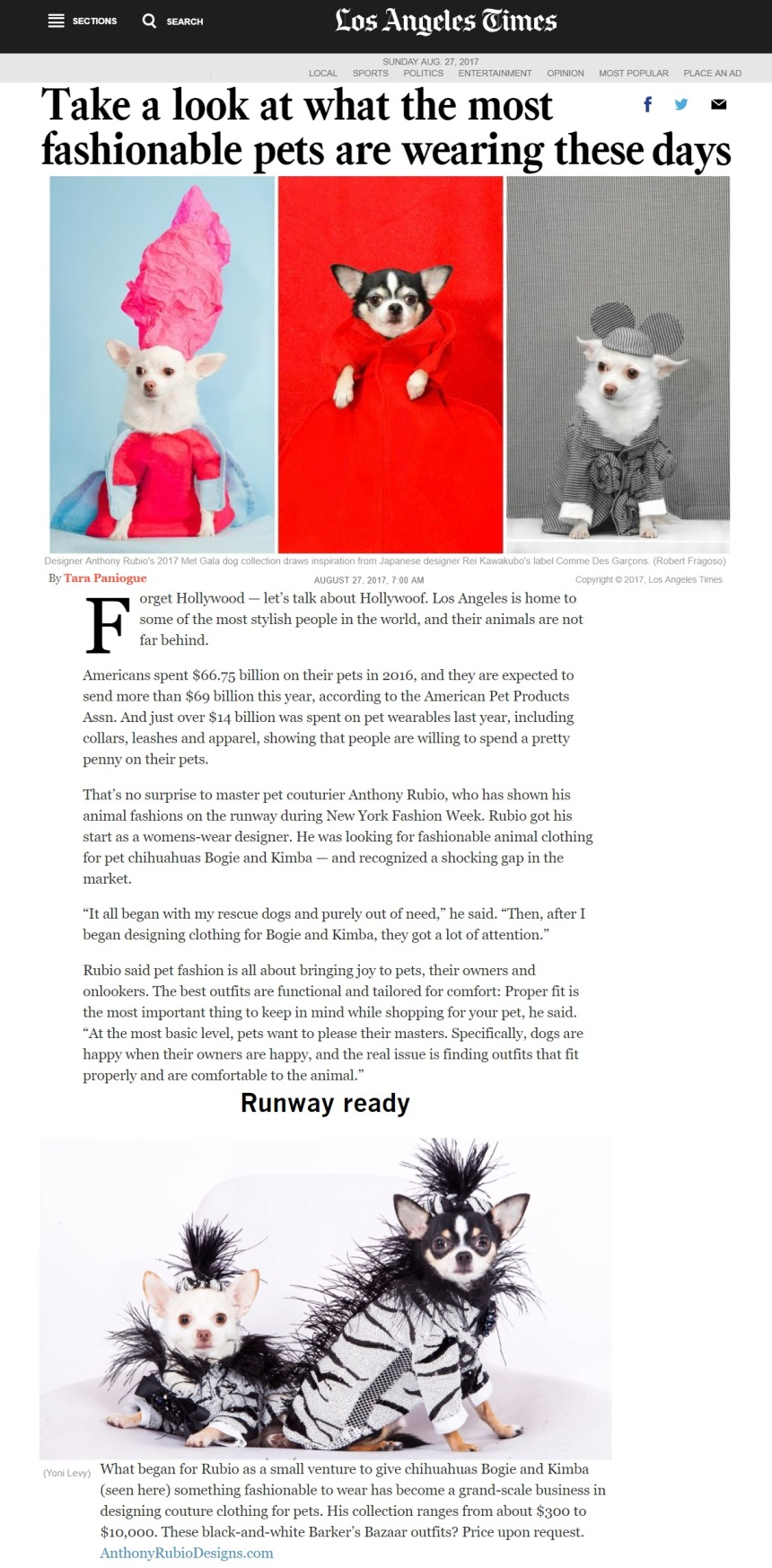 Anthony Rubio's featured article in the LA Times - Canine Couture