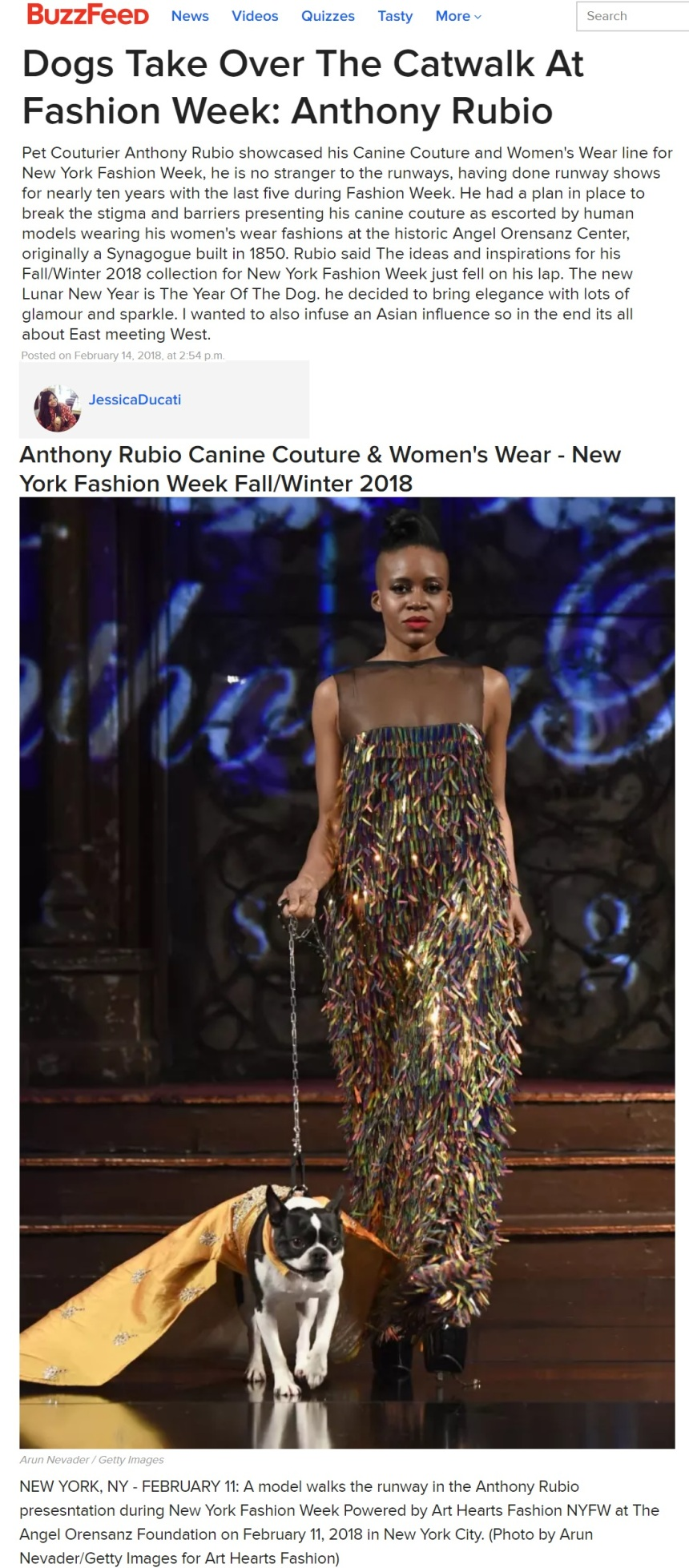 Anthony Rubio's NYFW runway show covered by BuzzFeed. Canine Couture