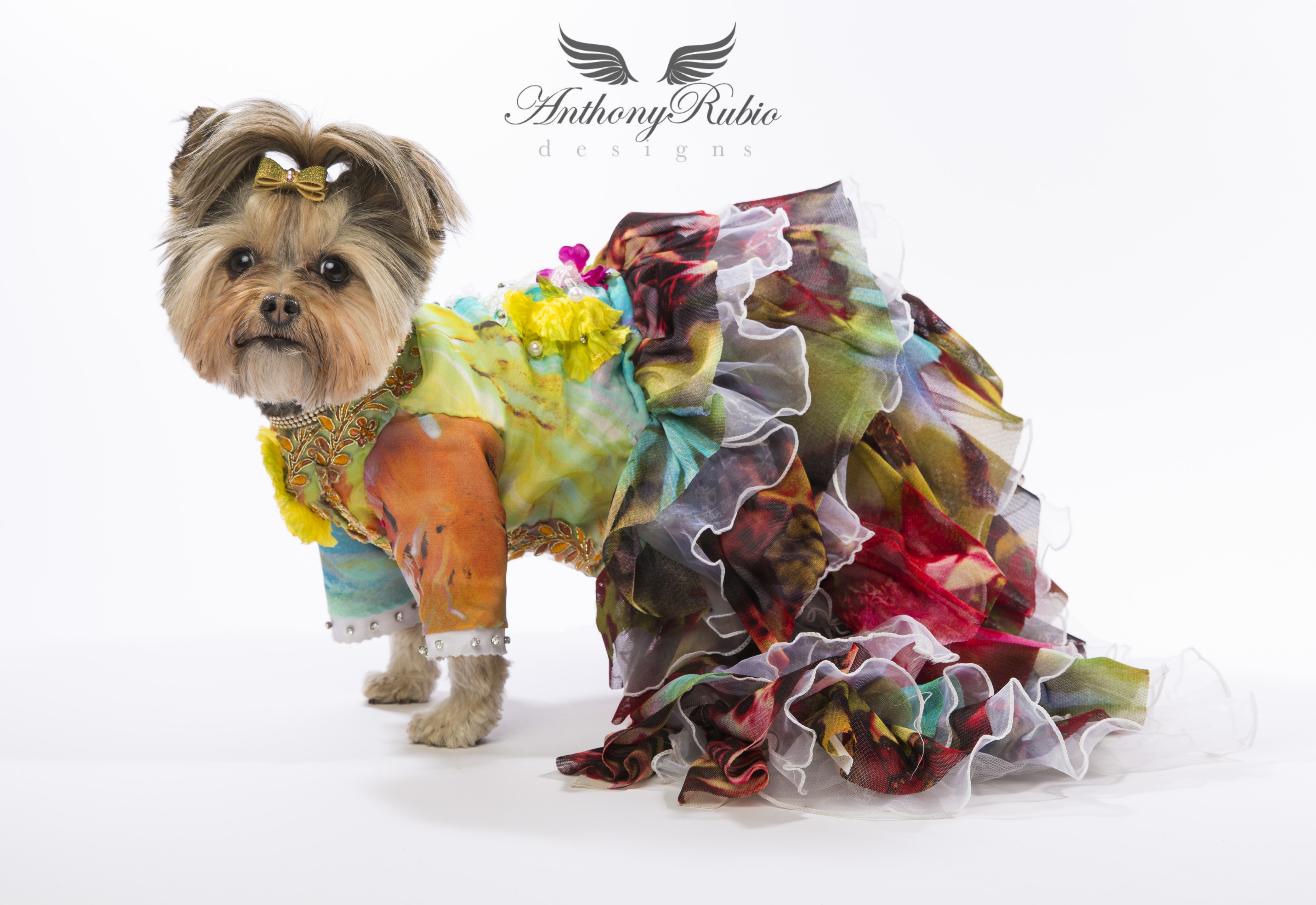 Canine Couture by Anthony Rubio - Spring/Summer Gowns for Dogs